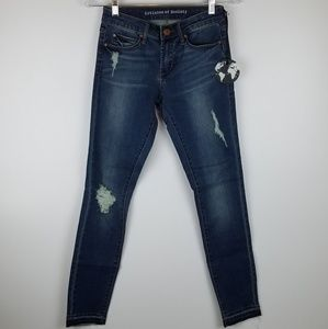 ARTICLES OF SOCIETY | DISTRESSED SKINNY JEANS